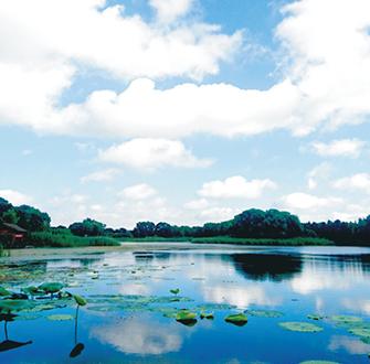 鏡湖濕地公園